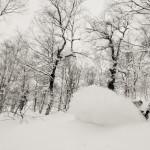 Snowboard-Photo-Josh-Dirksen-in-Hokkaido-by-Oli-Gagnon