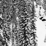 Snowboard-Photo-Gigi-Ruf-in-NelsonBC-trees-by-Andy-Wright