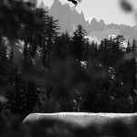 Snowboard-Photo-Charles-Reid-Mammoth-by-Blotto