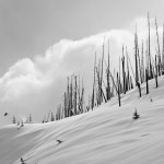 Snowboard-Photo-Austin-Smith-Burned-Forest-Whistler-by-Oli-Gagnon