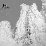 Snowboard-Photo-Dustin-Craven-Revelstoke-Trees-Jump-by-Jeff-Patterson