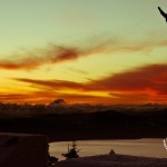 Snowboard-Photo-Werni-Stock-Sunset-Tahoe-by-Blotto